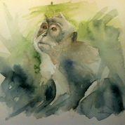Balinese Monkey